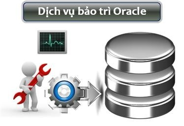 dich vu bao tri oracle