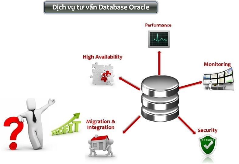 dich vu tu van oracle
